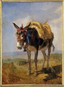F.Palizzi, Asinello. Penna su carta - 12x17 cm. Vasto, Pinacoteca