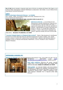 NletterGEP-page-007